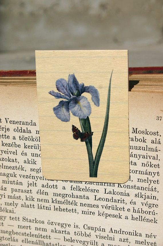 Magnetic bookmark iris  flower botanical by GuBoArtBook on Etsy,