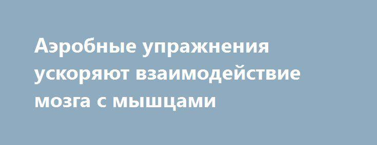Аэробные упражнения ускоряют взаимодействие мозга с мышцами http://articles.shkola-zdorovia.ru/aerobnye-uprazhneniya-uskoryayut-vzaimodejstvie-mozga-s-myshtsami/  Силовые упражнения и упражнения на выносливость не только готовят спортсмена к различным видам нагрузки, но также могут повлиять на то, как мозг взаимодействует с мышцами. Исследование Университета Канзаса показывает, что взаимодействие мозга с четырехглавой мышцей у людей, которые выполняют упражнения на выносливость, например бег…