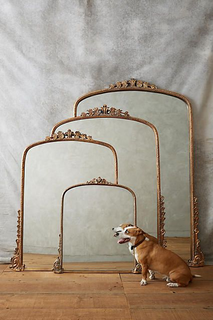Gleaming Primrose Mirror - anthropologie.com