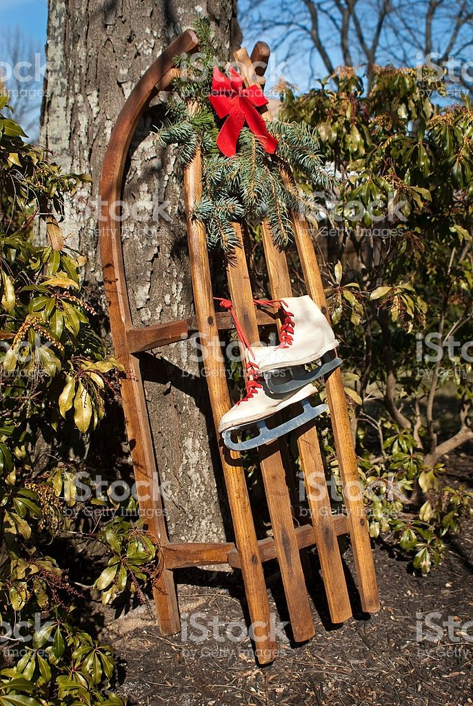 An antique German wooden sled and ice skates resting against a tree ...