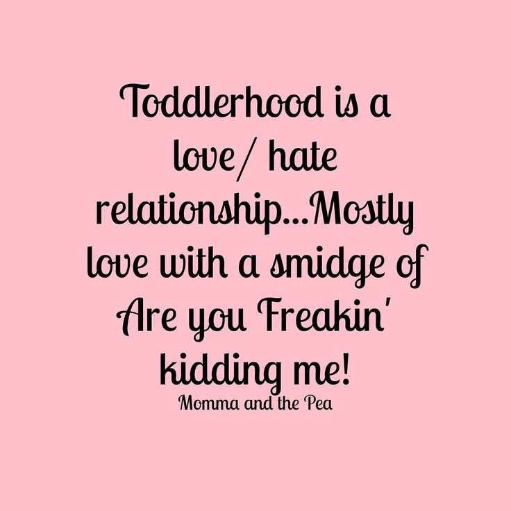 Love Hate Quotes: 17 Best Ideas About Toddler Humor On Pinterest