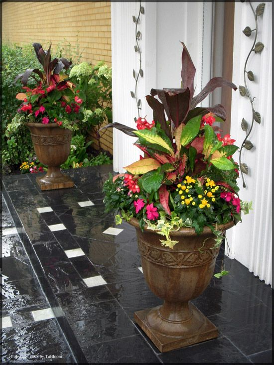 17 best images about front door flower pots on pinterest Container plant ideas front door