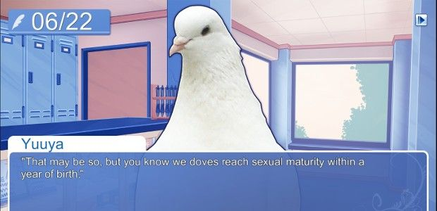 Thanks in large part to its relentless weirdness, Hatoful Boyfriend might just be the greatest dating sim for people who don't like dating sims (or don't know that they do).