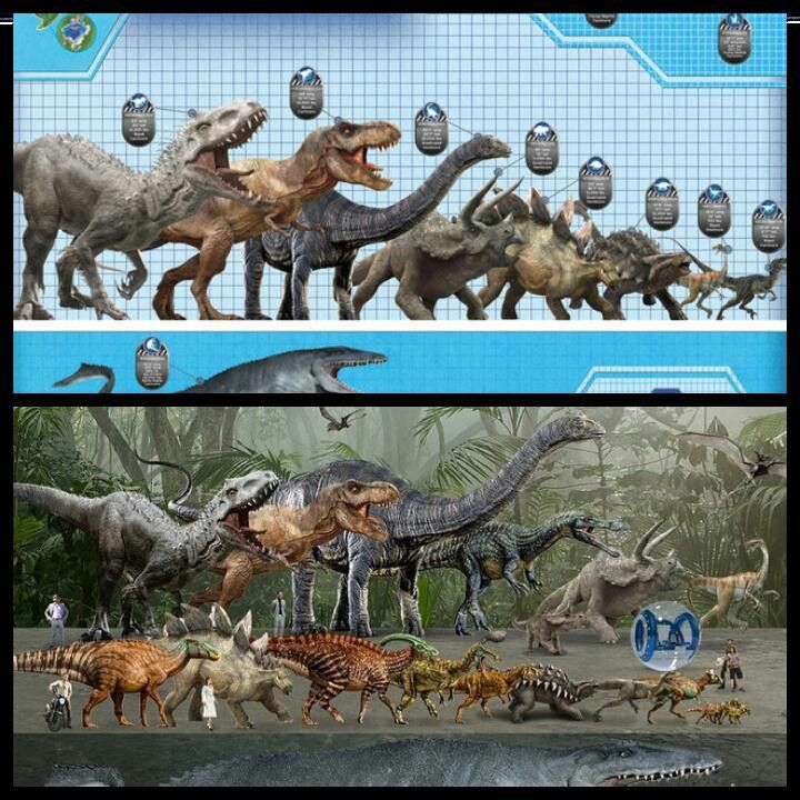 Jurassic World- The Actual Sizes of the Jurassic World Dinosaurs (the (') is for…