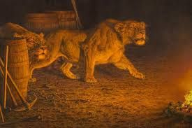 Tsavo Man-Eaters- 2 male lions kill and eat 135 railway workers building a railway bridge over the Tsavo River in 1898