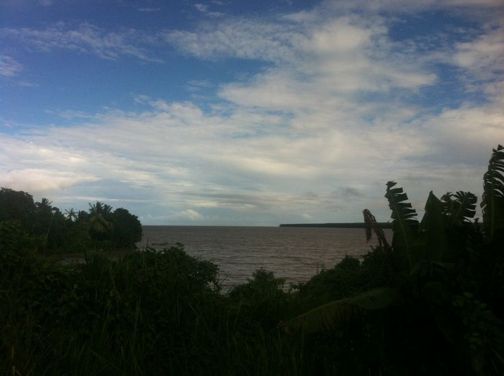 Achat terrain à bâtir Rémire-Montjoly | GuyaneConseil.com