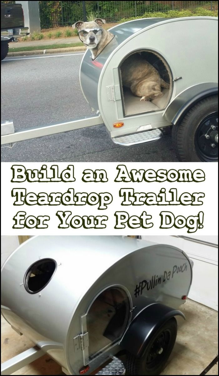 These tiny pet campers will forever change the way you camp & travel with your pet!