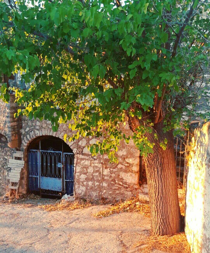 Avgonima,chios island, a beautiful greek village