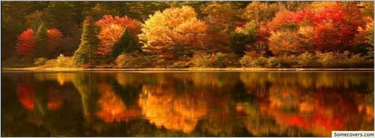 Autumn Leaves Beautiful Nature Facebook Timeline Cover Facebook Covers - myFBCovers
