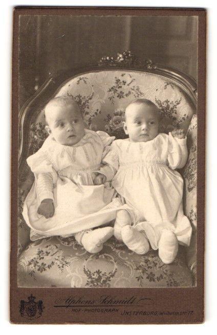 Fotografie Alphons Schmidt, Insterburg, Portrait zwei Säuglinge •
