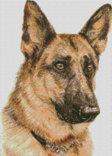 Cross Stitch Chart - Kit German Shepherd Dog