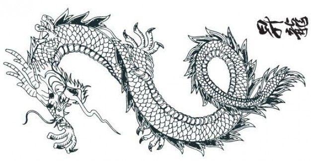 Mandala dragon tattoo google search lots more stuff pinterest mandalas search and dragon - Mandala de dragon ...
