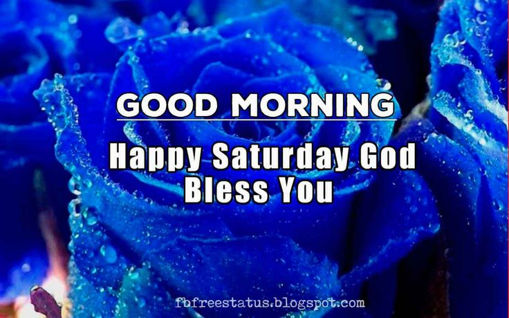 Good Morning, Happy Saturday, God Bless You.
