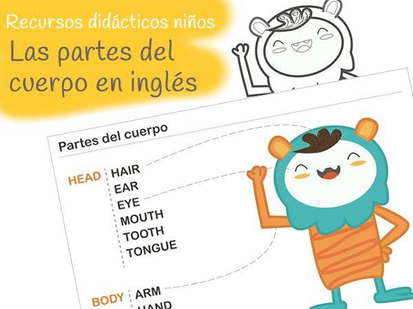 Imprimible: partes del cuerpo. Inglés niños.