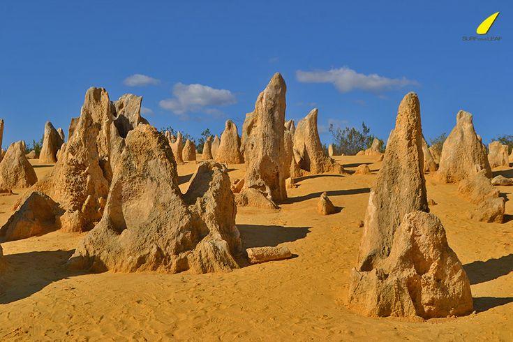 surfonaleaf-national-parks-australia-pinnacles