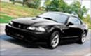 2003 Mustang Cobra With A Boost - Muscle Mustangs & Fast Fords Magazine