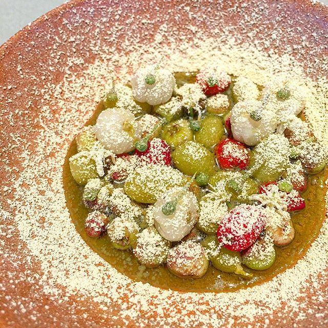 Muntrie, Desert Lime, Gabinge and Lemon Aspen @nomacph #NomaAustralia #australiannativefoods #noma #restaurantaustralia #nomacph