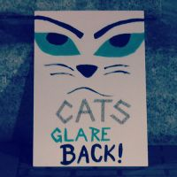 CatsGlareBack