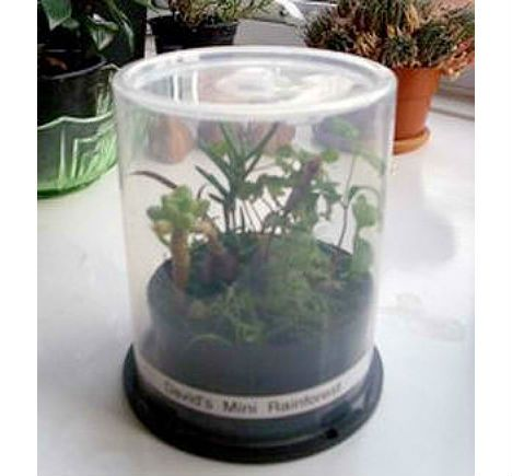DIY Greenhouses: 10 Structures You Can Build Yourself (Pictured: CD Spindle Propagator)