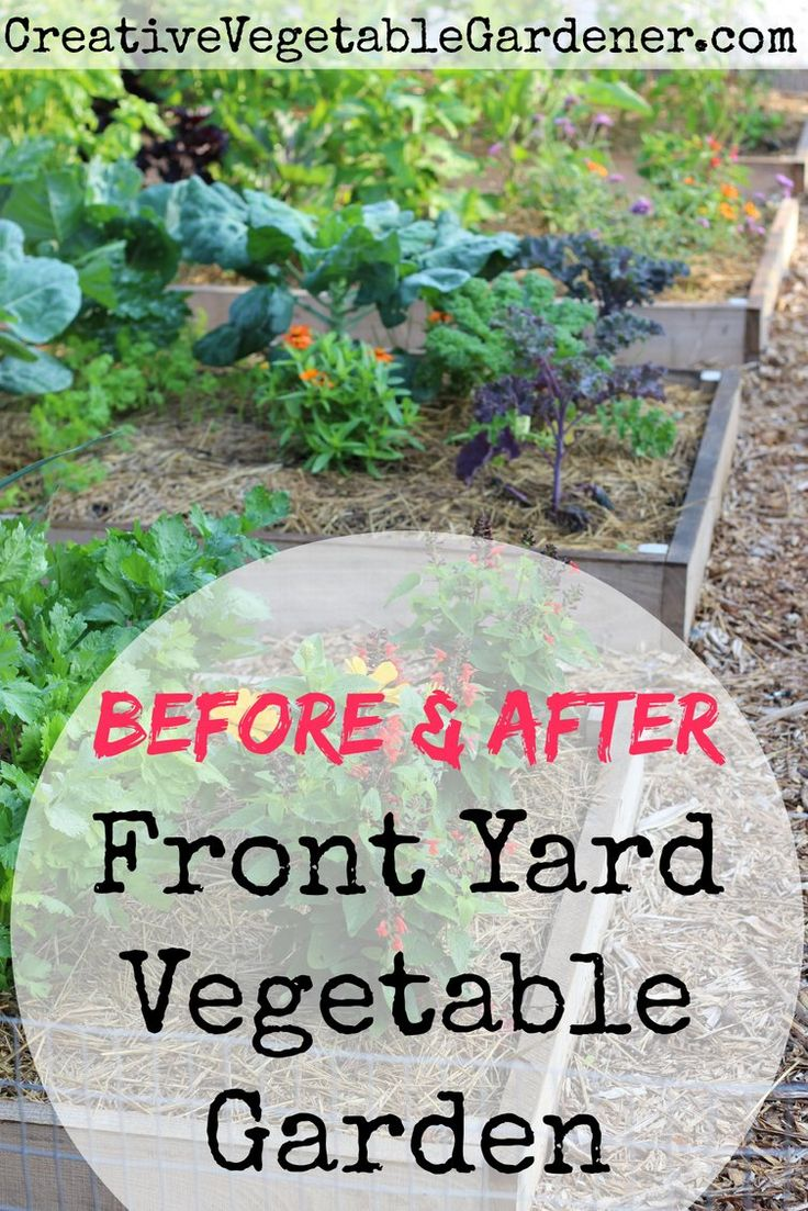 Ways to make your vegetable garden beautiful - Front Yard Garden Makeover
