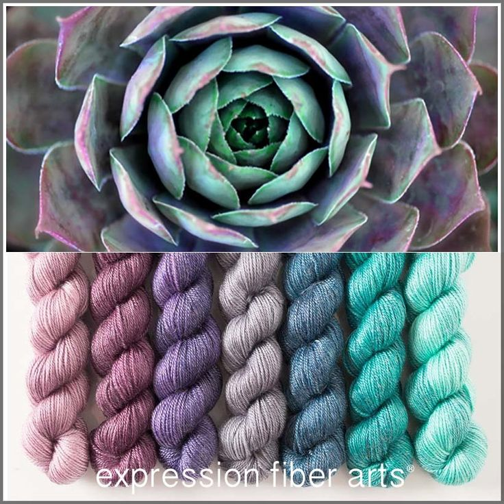 Succulent Hues - mini skein kit by expression fiber arts