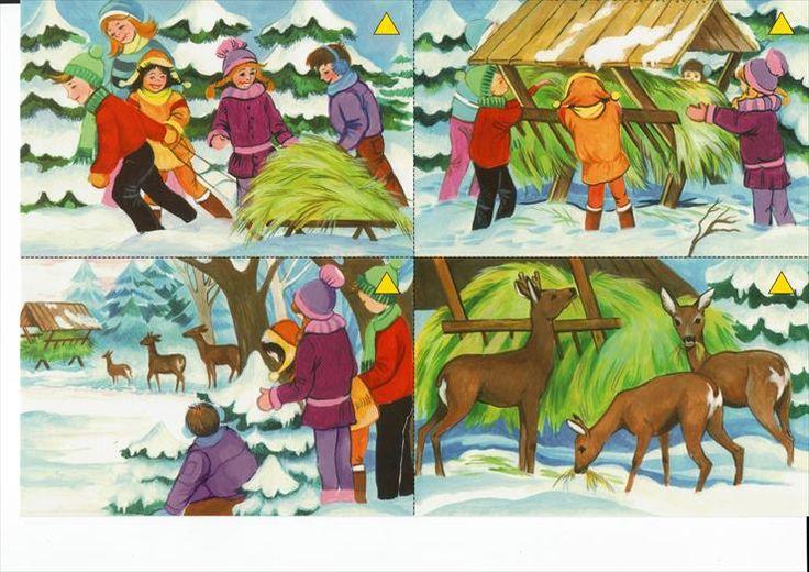 Zwierzęta i ptaki zimą pomoc, dokarmianie - dokarmianie zwierząt w lesie.jpg