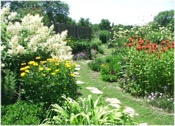image perennial Arranging Flowers from the Garden with Perennials Flower Bed gardening ideas
