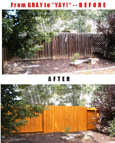 17 Best Images About Gardening Tips And Ideas On Pinterest: 17 Best Images About Backyard Fence On Pinterest