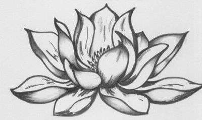 Lotus flower - Drawing,  45x30 cm ©2008 by Katarina Svedlund -