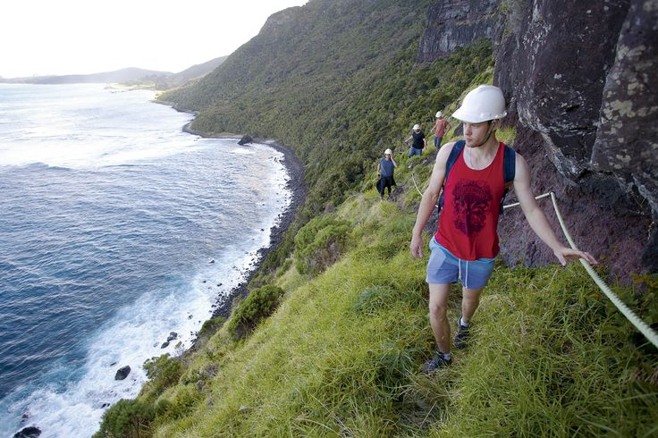 Explore NSW's Howe Island, RoyalAuto Nov 2106. Hikers on the Lower Road to Mount Gower. Photo: Getty. #lordhowe #ordhoweisland #nsw #hikers #hiking #mountgower #mtgower
