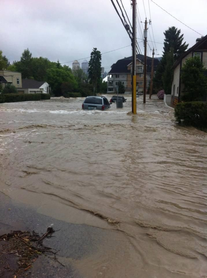 @Bunny Babstock Alicious 1m Devastating! #abflood