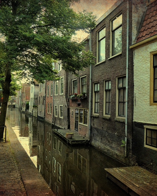 Almaar, Netherlands. I really need to live in Europe someday. Somewhere. ANYWHERE.
