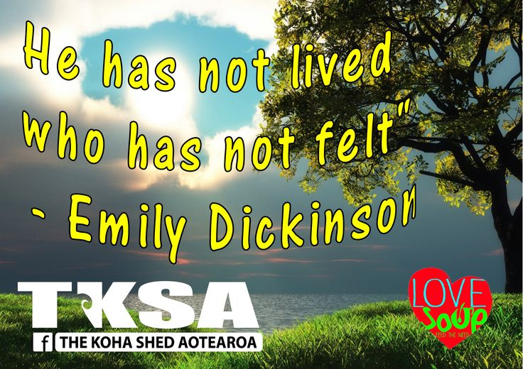 """He has not lived who has not felt"""" - Emily Dickinson"""
