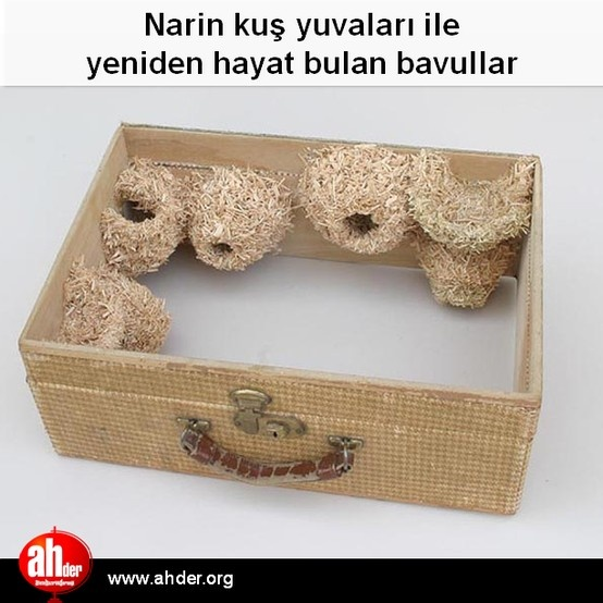 Narin kuş yuvaları ile yeniden hayat bulan bavullar http://www.ahder.org/narin-kus-yuvalari-ile-yeniden-hayat-bulan-bavullar