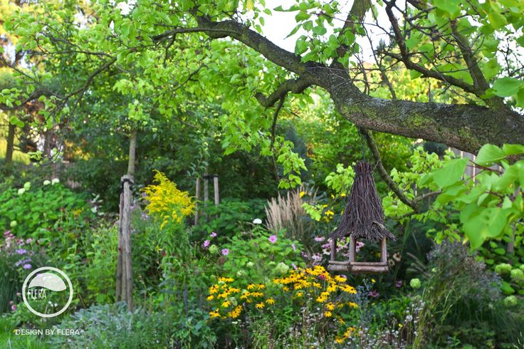 #landcape #architecture #garden #meadow #feeder
