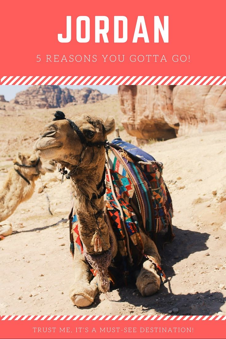 5 Reasons Why You Should Travel To Jordan