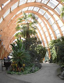 Sheffield Winter Garden - Wikipedia, the free encyclopedia