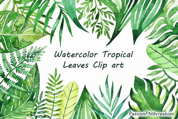 Watercolor Tropical Leaves Clip Art Handpainted Clipart Png Diy