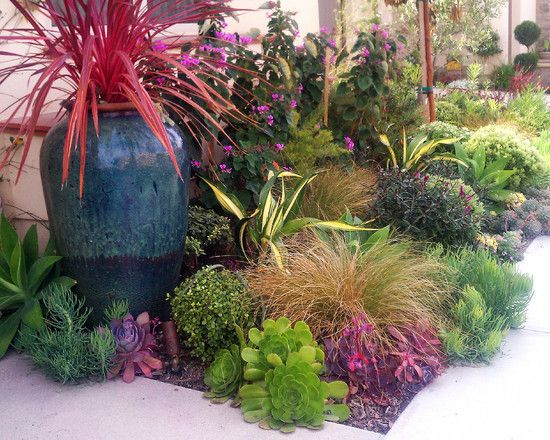 I like this dark colored pot, and drought plantings that would not attract bees to the poolscape.