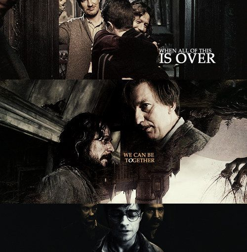 414 Best Images About Harry Potter On Pinterest