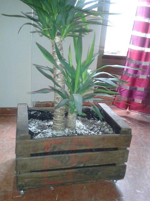 Tiesto con caja de madera (de fruta), sencillo de hacer, incluidas ruedas.