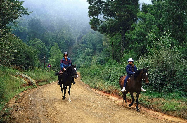 Hogsback Horse Trail - South Africa by South African Tourism, via Flickr
