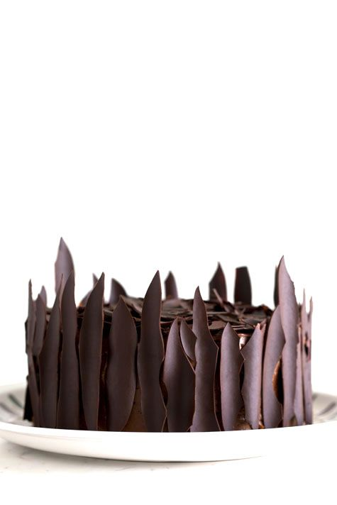 chocolate cake, chocolate spikes