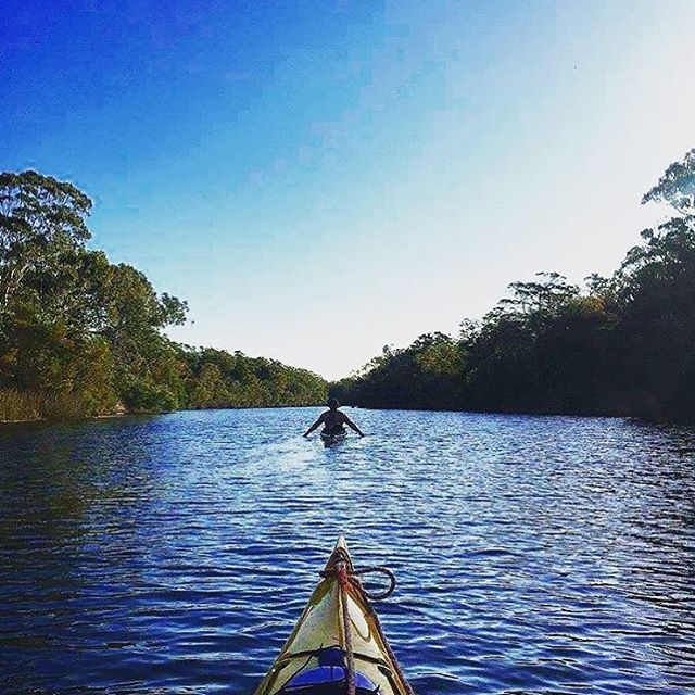 Exploring the incredible Noosa Everglades on a self-guided tour ... A must do to add to your Noosa bucket list! One of only two Everglades systems in the world, the Noosa Everglades are best explored by canoe or kayak.