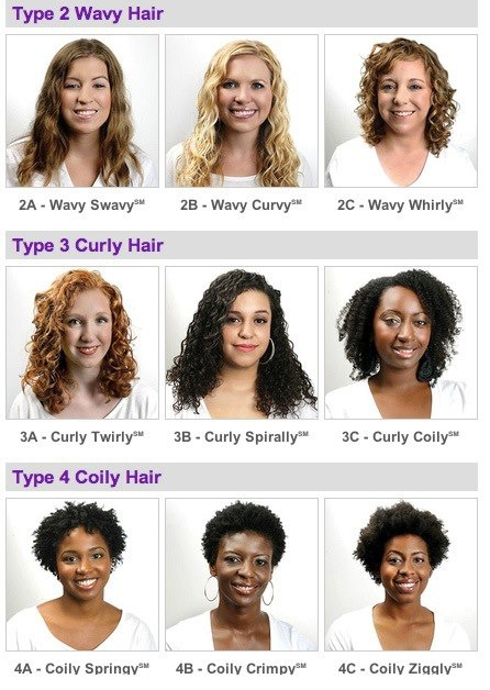 natural hair styles types 1000 ideas about hair type chart on 3567 | 74d0bc9513146d1c368189abf72fe463
