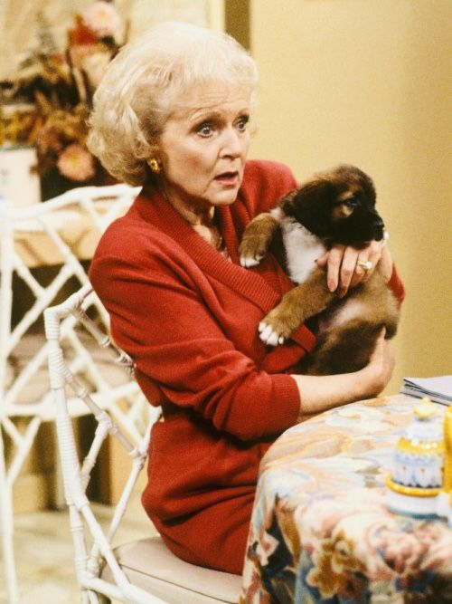 Betty White as Rose Nylund in the Golden Girls in 2020 | Betty white, Golden girls, Betties