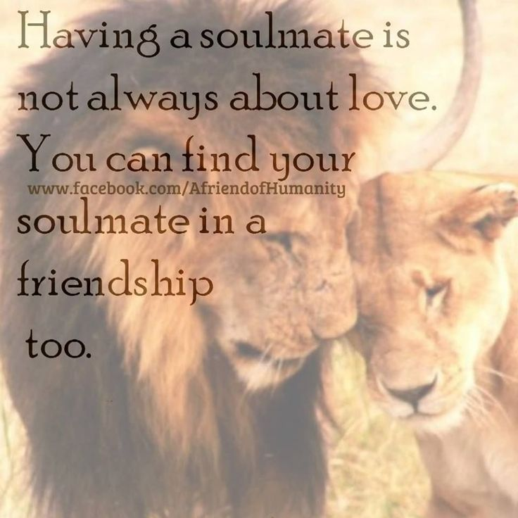 Best Friend Quotes For Her: Best 25+ Find Your Soulmate Ideas On Pinterest