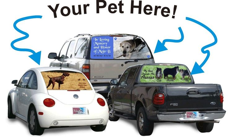Your pet custom rear window graphic