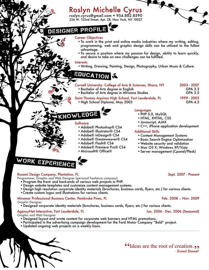 10 best Resumes images on Pinterest Creative curriculum - pimp my resume