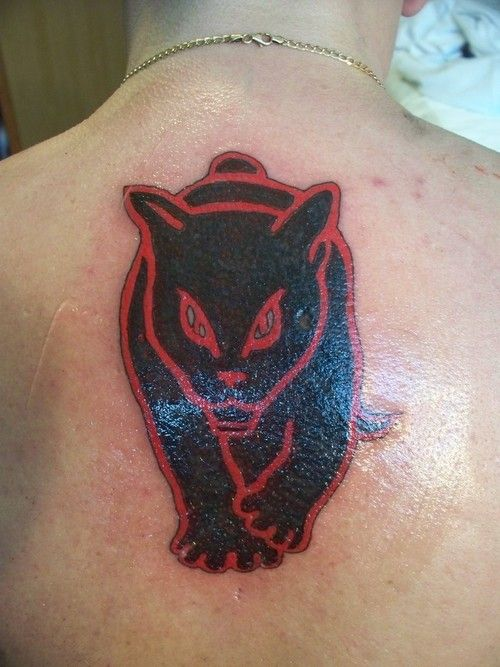 Sunderland football club black cat